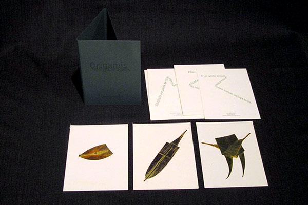 Origamis organiques