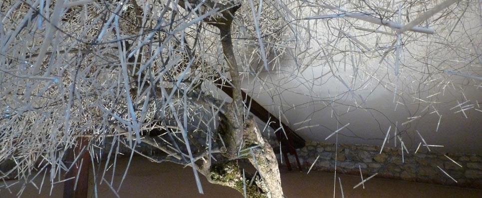 «Rêve d'olivier» Installation de Carole Solvay